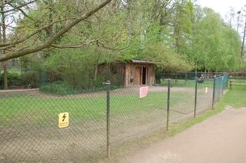 Naturzoo Rheine d50 2012 061