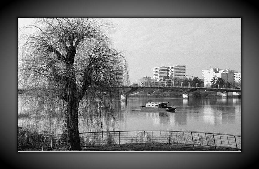 La Loire, rive sud