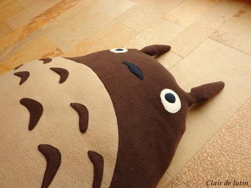 Mon pouf Totoro