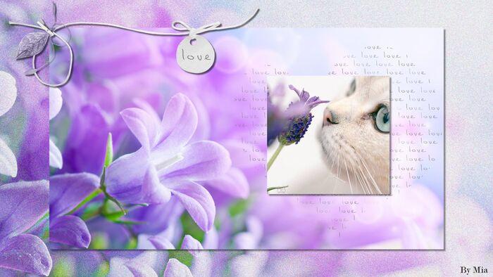 """Mes marque-pages """"maison"""" format carte"""