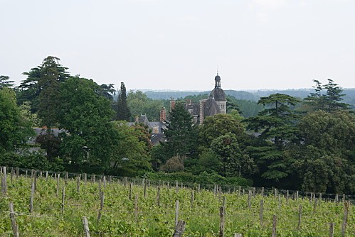 chateauVaults0021