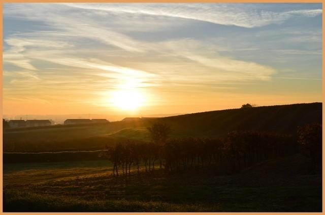 Blog de sylviebernard-art-bouteville : sylviebernard-art-bouteville, Châteauneuf-sur-Charente et Bouteville 13.11.2012
