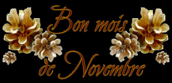 Bon 1er novembre!