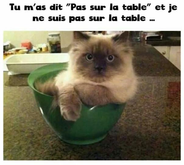 Bonjour Aujourd Hui Rire Et Humour Marie Fabinou