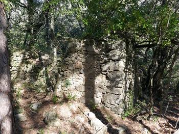 Les ruines de la bergerie