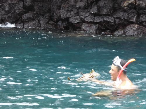 13 ème jour Santa Cruz sortie en bateau (3) et baignade