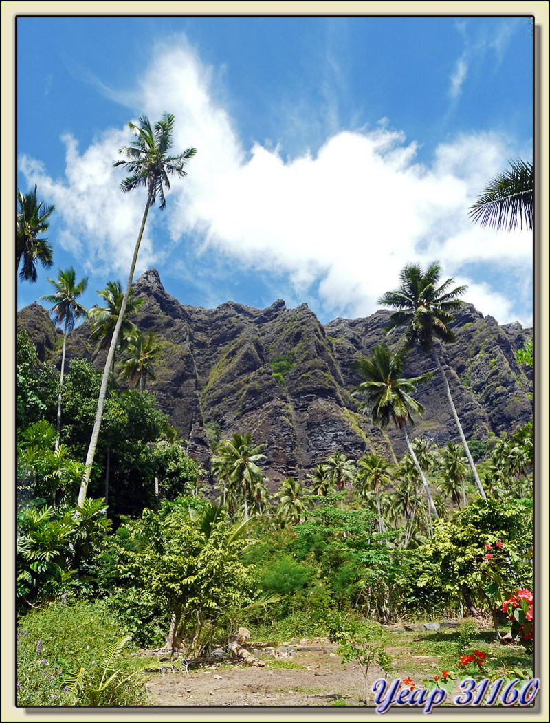 Vallée de Hakaui - Nuku Hiva - Iles Marquises - Polynésie française