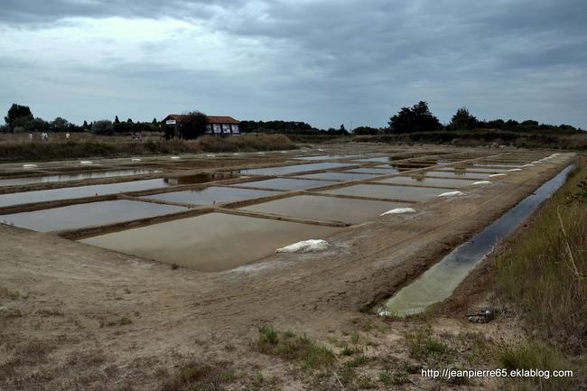 2015.08.11 Île d'Oléron (Charente-Maritime) 2