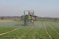 pesticides02.jpg