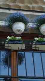 Ciel BLEU de mai 2011 rue de l'ECHO.