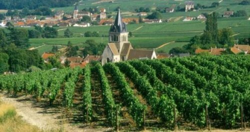 FRANCE (CHAMPAGNE - ARDENNES)