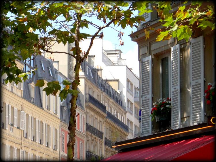 Fenêtre à Paris, arbre, arrière plan d'immeubles