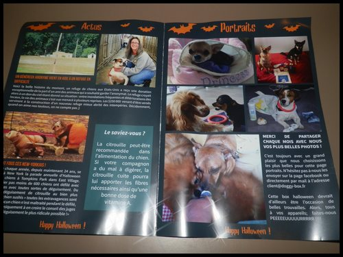 "Box# Doggybox "" Happy Halloween "" - Octobre 2014"