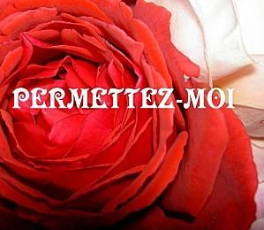 PERMETTEZ-MOI.jpg