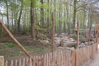 Zoo Osnabruck d50 2012 107