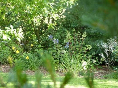 """mon plaisir """"le jardin"""""""