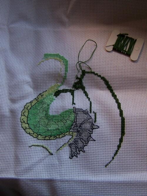 Avancée sur le dragon vert en colère