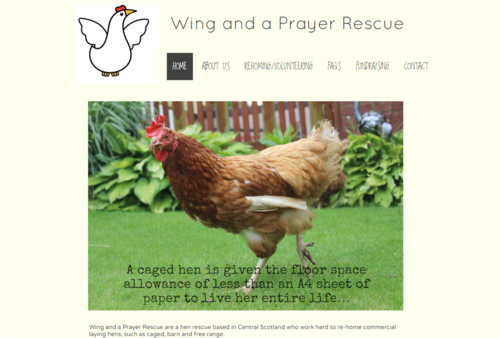 Wing & a prayer rescue