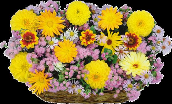 Paniers  de fleurs/ 5