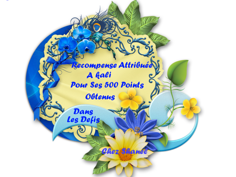 500 Points défis SHANEL