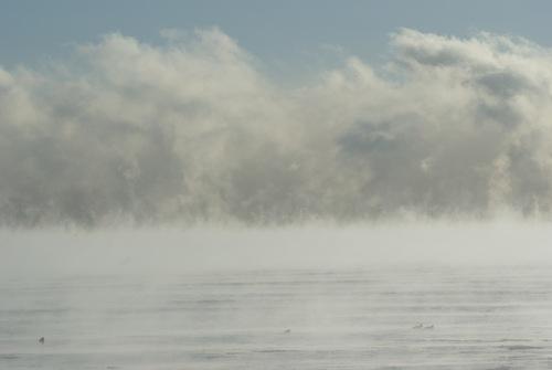 Nurserie des nuages bis