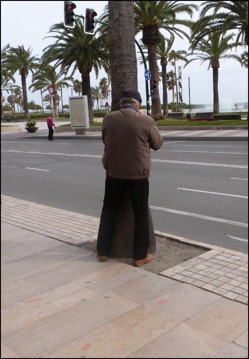 Le Cami - ESCAPADE A SALOU