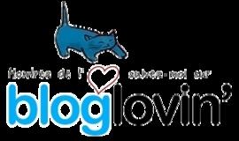 Suivez Littérature au primaire avec Bloglovin'