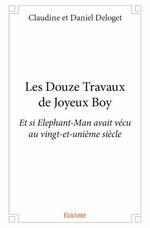 # 2- Les douze travaux de Joyeux Boy