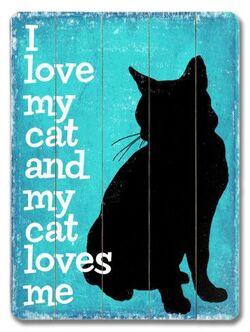 "Echange ""chats"" chez Sandrine : atc n°6."