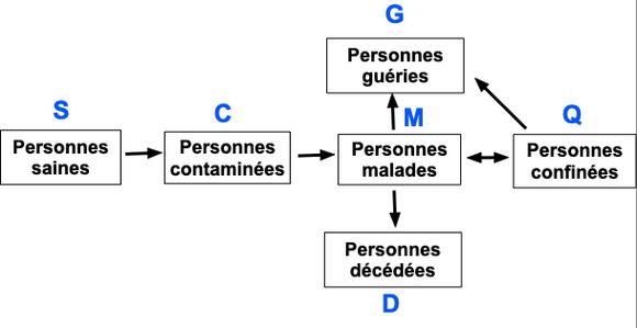 Les modèles mathématiques de simulation des épidémies.