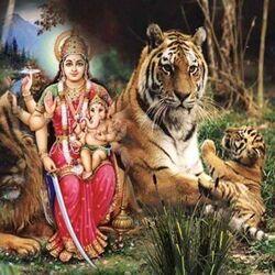 Pacte avec Mami wata la déesse de la richesse pour devenir riche et puissant