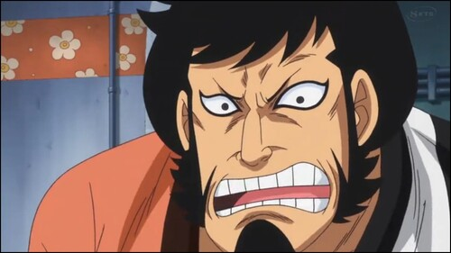 One Piece 613 Vostfr