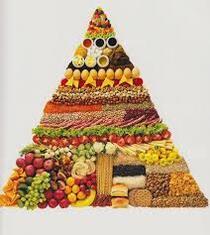 Guide de Nutrition, l'équilibre alimentaire par le végétarisme - Raphaël Titina -