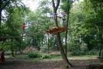 Chichoune Accroforest