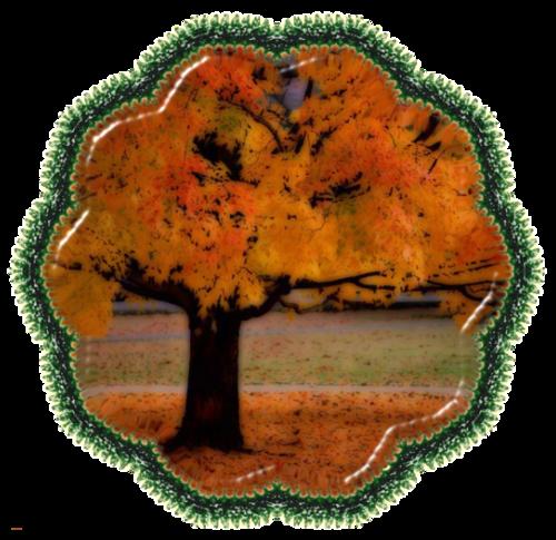 Petite déco  cadre d'automne etc