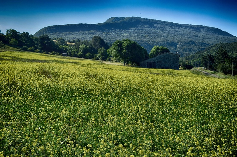 2016.06.26 En Drôme Provençale (région Rhône-Alpes)