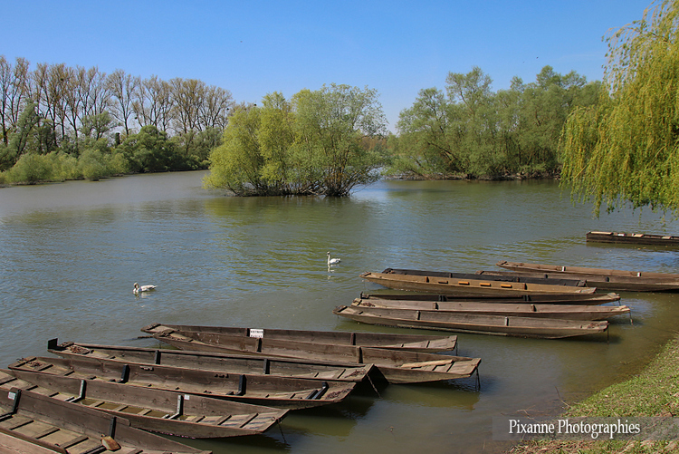 Münchhausen : Delta de la Sauer
