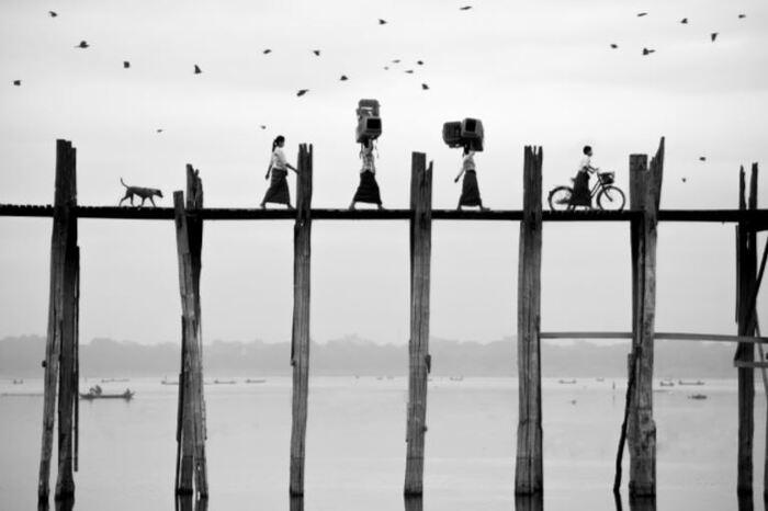 Ces 20 photographies des lauréats du concours international Sony sont époustouflantes