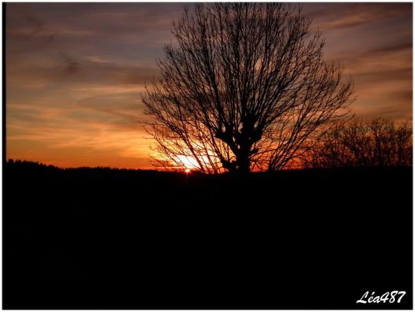 DSCF0476-coucher-de-soleil.jpg