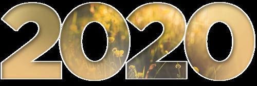 2020 - golden tube