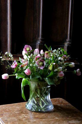 Des tulipes en forme d'oeufs !