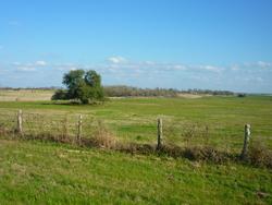 Winchester - Navasota : 119 km