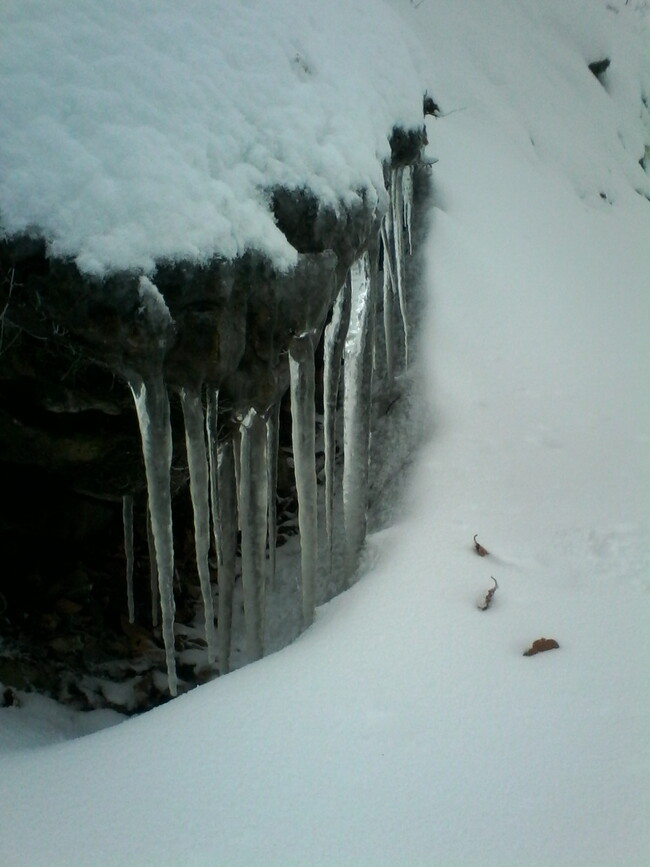 Premières neiges... Episode II... Glaçons...