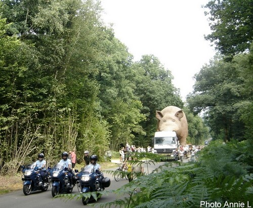 Woinic l'emblème des Ardennes...