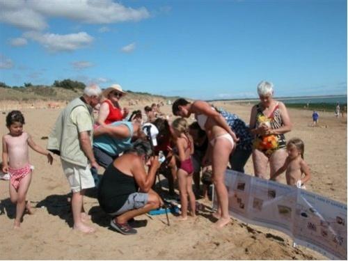 Opération « Pour la laisse de mer 2012 »