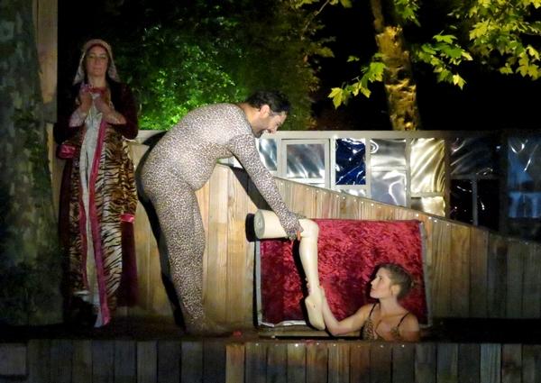 AVATARS, un époustouflant spectacle de la Compagnie des Gens a enflammé le public Châtillonnais !