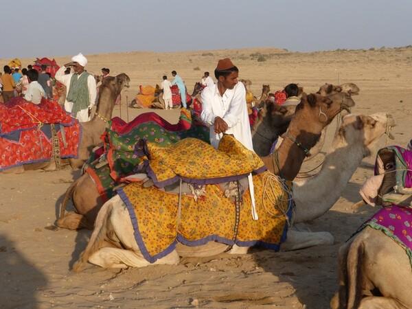 Inde 2015- Jour 5- Les dunes du désert de Thar