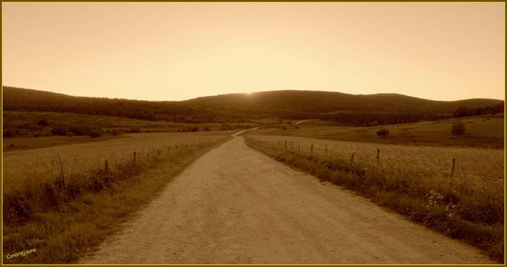 En chemin vers compostelle, La Dômerie du Sauvage