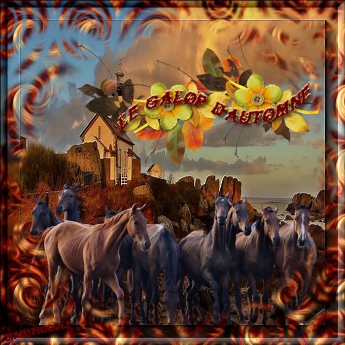 ♥♥ défis pour fée capucine et Lilimaya ♥♥