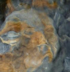 LES EMANANTS, Formes mystérieuses dans la nature